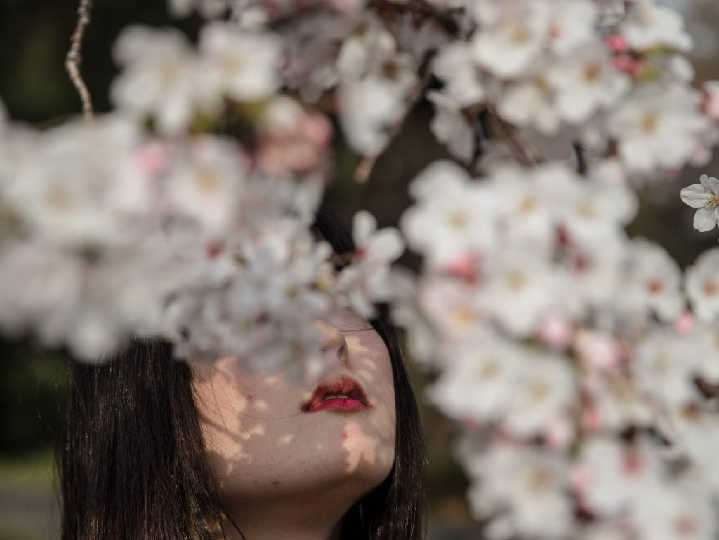 Tokyo 03.2020 - Sakura pick in coronavirus outburst - Shinjuku Goyen