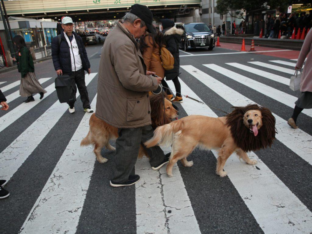 Tokyo -March-2020 -coronavirus in Town photo: Anna Bedynskaanna.bedynska@gmail.com www.annaabedynska.pl